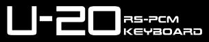 U-20 Small Icon